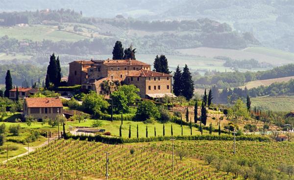 Winery Wonder