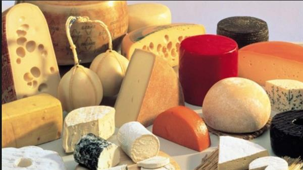 Cheese Making in France