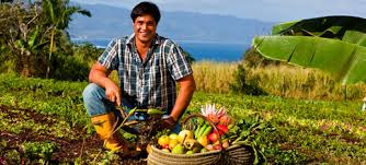 Farm to table Oahu