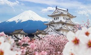 Forsythe's Fly to Japan - Honeymoon registry Japan