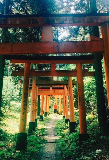 Kyoto: Hidden Bamboo Temple Hike