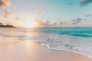 Frey Wedding  - Honeymoon registry Hawaii or Bali