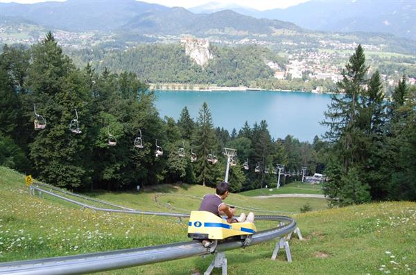 Lake Bled Toboggan