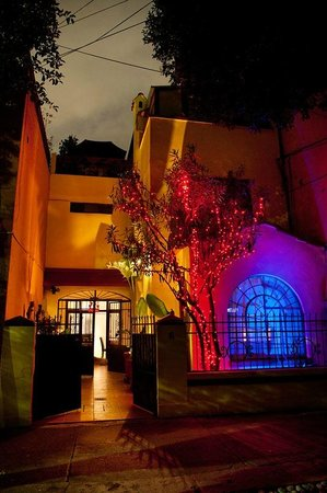 A nights accommodation at The Red Tree House in Mexico City