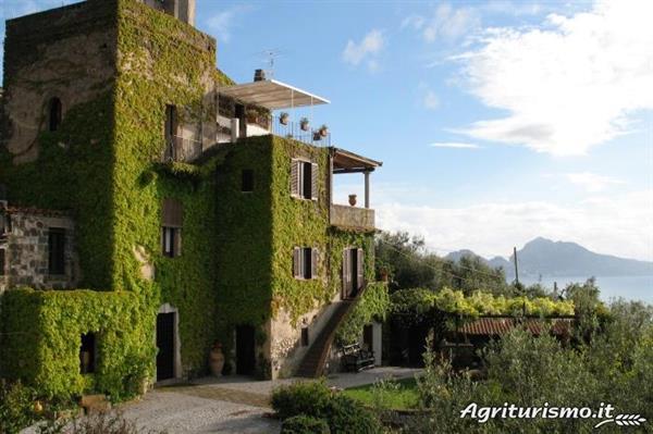 Farm Stay in Napoli