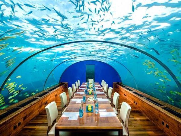 Underwater restaurant experience