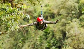 Zipline Tour Over The Forest Canopy