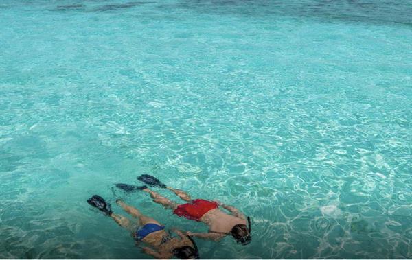 Andaman Island Snorkelling