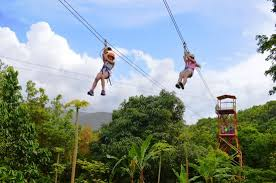 Rain Forest Zipline Adventure
