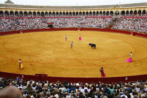 A bull fight in Madrid