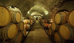 Gibbston Valley Vineyard, Wine Cave & Winery Tour - Queenstown