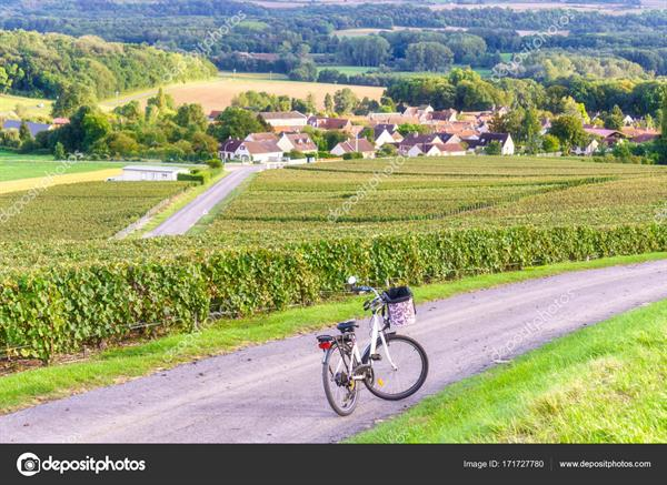 Bicycle hire - Reims