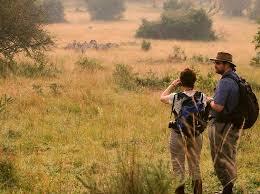 Lake Mburo Walking Safari