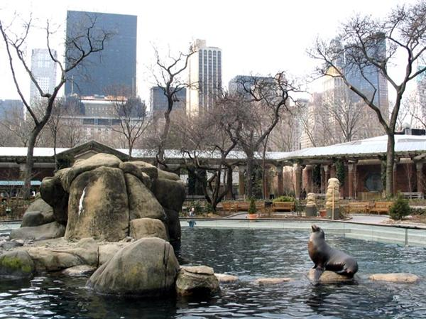 Admit 1 - Central Park Zoo
