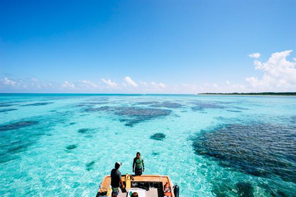 Snorkeling on Hatoma Island