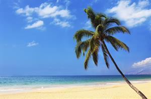 Joel & Claire's Honeymoon Fund - Honeymoon registry Hawaii