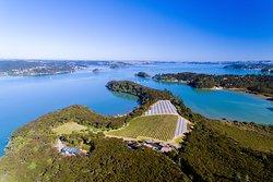Omata Estate Bay of Islands