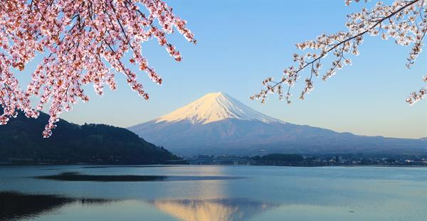 Scenic Mt Fuji Drive