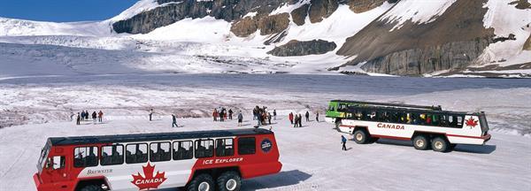 1 day Glacier adventure