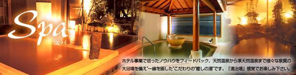 Tokyo Hot Spring Hotel (1)