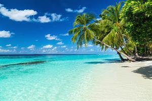 Kathryn and Thomas' Honeymoon - Honeymoon registry The Maldives
