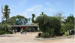 San Diego Zoo Family Pass
