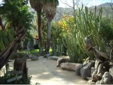 Visit to Moorten Botanical Garden - Palm Springs