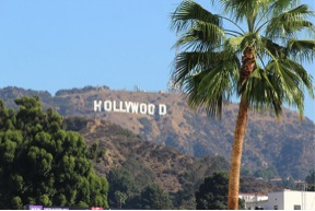 Hollywood Sightseeing including hop on hop off bus