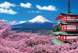 Sam and Anth's Honeymoon Registry - Honeymoon registry Japan