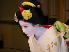 Maiko Performance Dinner Show
