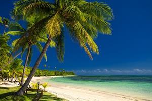 Honeymoon Registry  - Honeymoon registry Fiji!