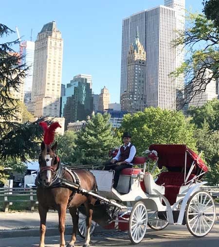 NYC Horse Carriage around Central Park