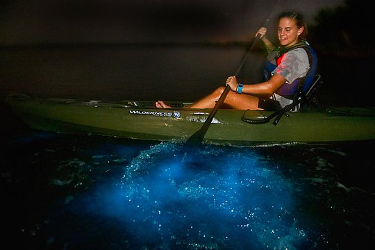 Bioluminescenes Kayak Tour