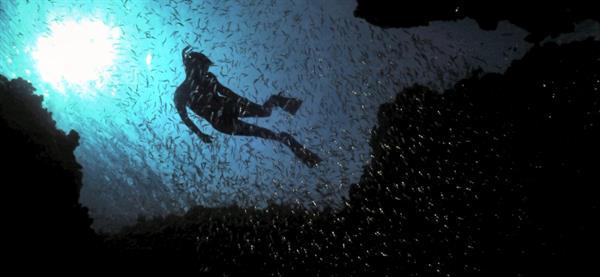 Eden Rock & Devil's Grotto 2 Tank Dive