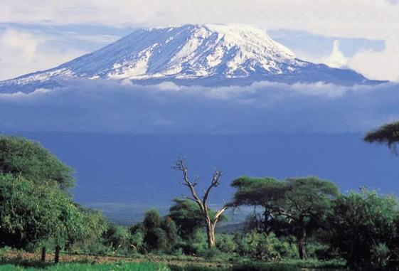 Hike Mt Kilimanjaro