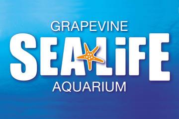 Sealife Acquarium