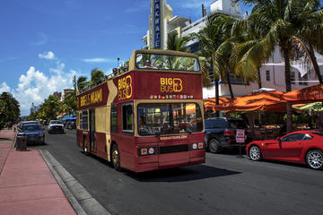Hop on Hop Off Bus Tour Miami