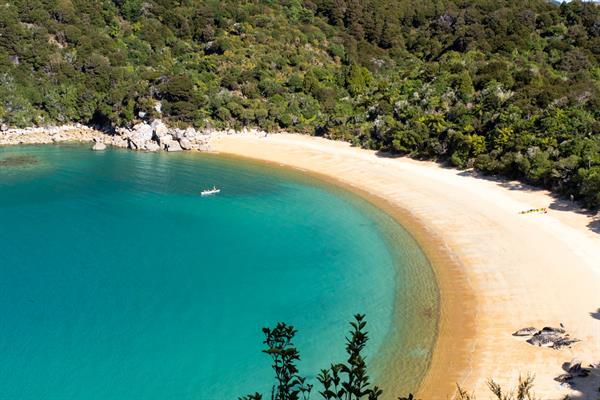 Camping Te Pukatea Bay