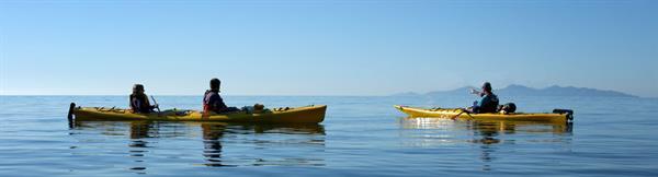 Cable Bay Kayak Tour