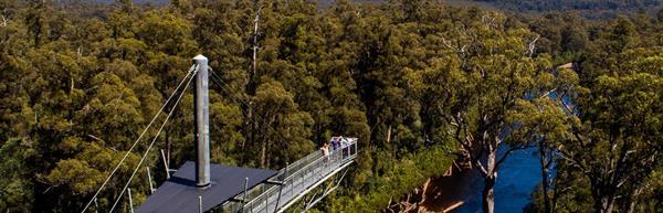 Tahune Forest Airwalk