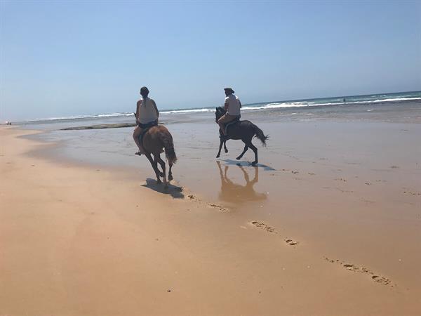 Horse Riding on Chidenguele Beach