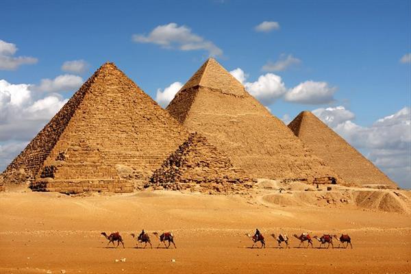 Show Us Your Nefertiti's