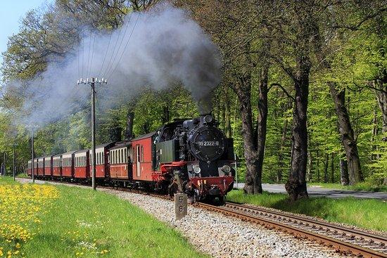 Good Gollie Miss Mollie-Train