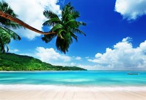 Our Honeymoon Fund - Honeymoon registry Undecided - a beautiful, tropical destination