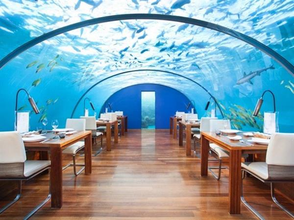 Night out at a romantic michelin star restaurant amongst the fishes