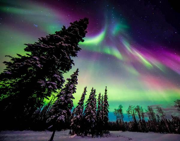 Northern Lights night tour