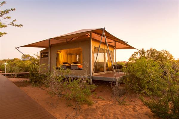 Broome Glamping