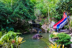 Eco Jungle Safari