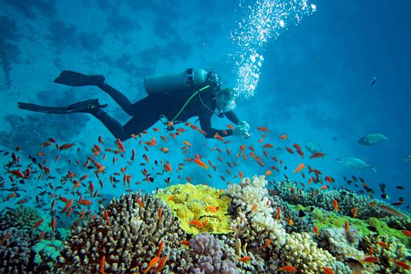 Activities in the Andaman Coast