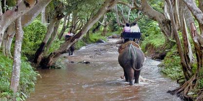 Activities around Chiang Mai